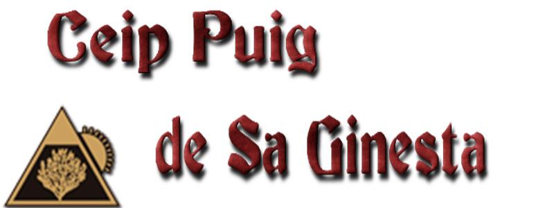 CEIP Puig de Sa Ginesta